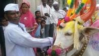 पोला हा महाराष्ट्रतिल एक महाव्ताचा सन आहे. हा ग्रामीण भगत मोठ्या उत्साहात साजरा केला जातो. ह्या दिवशी बैलाची पूजा केली जाते. बैल हा एक महाराष्ट्र मधील मह्व्ताचा भाग आहे. बैलाचा...