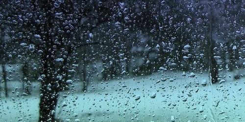 येरे येरे पाउसा तुला देतो पैसा । पैसा झाला खोटा पाऊस आला मोठा ॥ जून येताच पावसाला सुरवात होते. पाऊसाची काही चित्रे आपल्या करीता . Like Like Love Haha Wow...