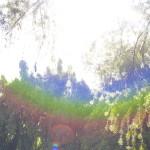 rainbow_by_barish_ki_boond