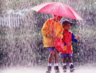 Rainy season starts in India in the month of July when winds of South West Monsoon starts blowing. According to the Hindi month it falls in Asadha and Shawan. Everyone...